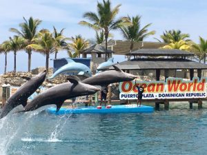 Ocean World Adventure Water Park a Puerto Plata