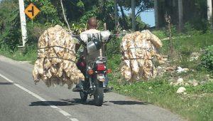 muoversi in repubblica dominicana