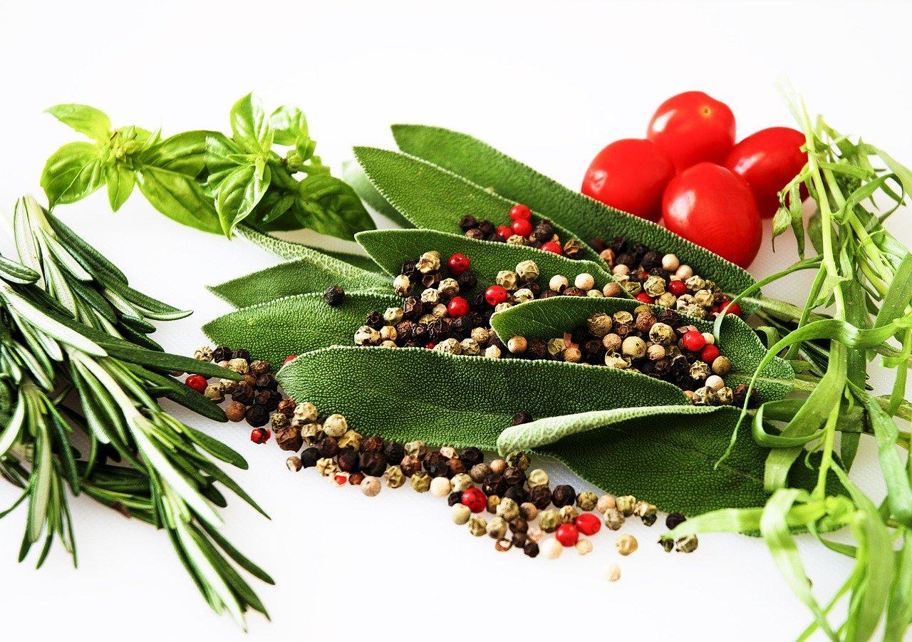 erbe aromatiche e spezie ai bambini